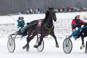 """Atšilę orai toliau kiša koją žiemos šventėms: atšaukiamos žirgų lenktynės """"Lazdijai 2016"""""""