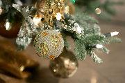 Šiaulietis kolekcinių Kalėdų eglės žaislų gauna ir iš benamių