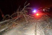 Antradienio vakaro perspėjimas: siaus pavojų keliantis vėjas