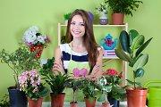 Įdomesni augalų komponavimo variantai interjere