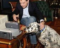Rusijos prezidento Dmitrijaus Medvedevo augintiniai