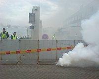 Gėjų eitynių dalyviams mestas dūmų užtaisas