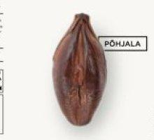 Estiško alaus etiketėje pavaizduotas salyklo grūdas danui tapo vagina