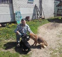 Aplinkosaugininkai nusprendė, kad kiemsargiai sudraskė stirną: šunų šeimininkui – 3175 eurų bauda