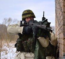 Ką reiškia priimtos pataisos dėl karinės jėgos panaudojimo taikos metu?