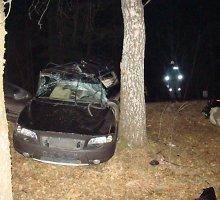 """Vengdamas kaktomušos, Varėnos rajone """"Volvo V70"""" vairuotojas rėžėsi į medį ir žuvo"""