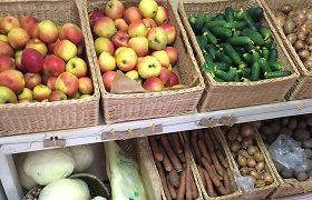 Ūkininkai prognozuoja, kad kai kurias daržoves šįmet valgysime vėliau nei įprastai
