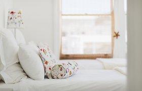 Būkite saugūs lovoje: kaip naikinti blakes?