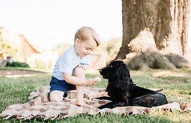 Kritikos strėlės Williamui ir Catherine: kliuvo už tai, kad leido sūnui George'ui ledais šerti šunį