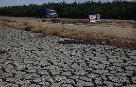 Klimatologai perspėja, kad šie metai bus karščiausi Žemės istorijoje