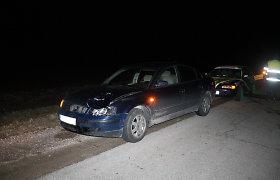 """Panevėžio rajono pakraštyje merginos vairuojamas """"Volkswagen"""" susidūrė su elniu"""