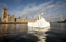 Didysis tirpsmas: Antarktidos ledo tirpimas gali performuoti visą Žemę