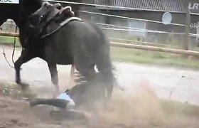 Liną Leonavičiūtę žirgas tiesioginiame eteryje nubloškė ant žemės – raitelė nugabenta į ligoninę