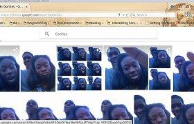 """""""Google"""" atsiprašė už tai, kad jos programa juodaodžius palaikė gorilomis"""