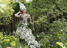 Žymioji Čelsio gėlių paroda Londone
