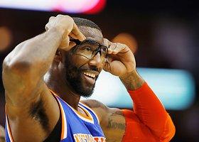 Amar'e Stoudemire'o karjera NBA