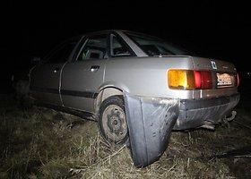Nuo policijos sprukęs vairuotojas nulėkė nuo kelio ir spruko