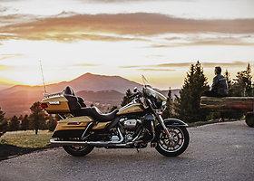 """Harley Davidson"""