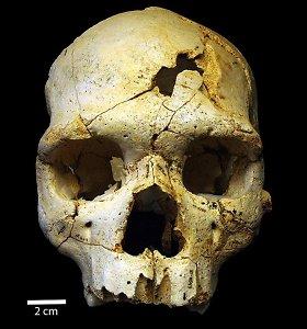 Pusės milijono metų įrodymai atskleidė pirmąją žmogžudystę
