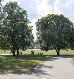 Ligoninėje mirė Vingio parke sumuštas vyras