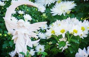 Kraštovaizdžio specialistė pataria: kaip dailiai sutvarkyti kapą ir kokiomis gėlėmis puošti