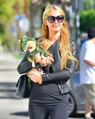 <b>Paris Hilton</b> savo šunį Helovino proga aprengė krokodilo kostiumu