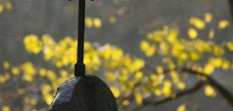 Vadoklių kapinių koplyčia – nerakinamas tvarkdarių sandėlis
