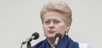 Prezidentės patarėja: Lietuva iš JAV tikisi karių ir skalūnų dujų
