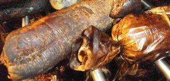 Ūkininko mėsos perdirbimo ceche – antisanitarinės sąlygos