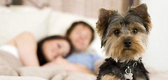 5 dalykai, kurie neturi atsidurti jūsų miegamajame