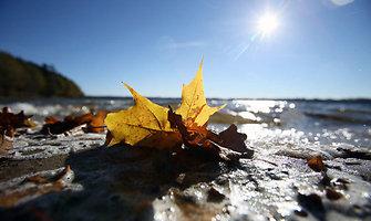 Kauno marių pakrantės nusidažė rudens spalvomis