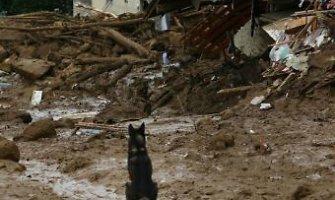 Japonijoje nuslinkus žemės nuošliaužai žuvo 36 žmonės, dar yra dingusiųjų