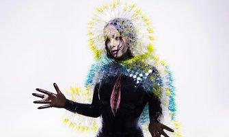Bjork tapo nauja programišių auka: internete nutekėjo naujas jos albumas