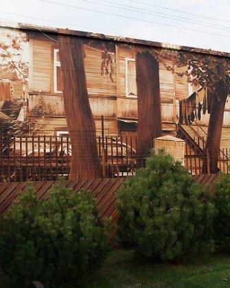 Kaune privataus namo siena papuošta įspūdingu piešiniu
