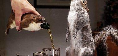 Olandų aludaris sukūrė stipriausią pasaulyje alų