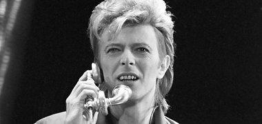 Vokietija dėkoja Davidui Bowie už pagalbą nugriaunant Berlyno sieną