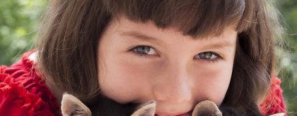 Kačių veislės, labiausiai tinkančios šeimai