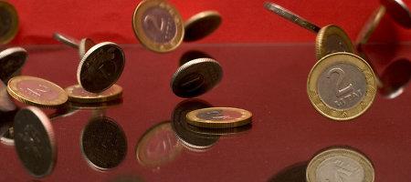 Privatizacija valstybės iždą šiemet papildė 30 mln. litų