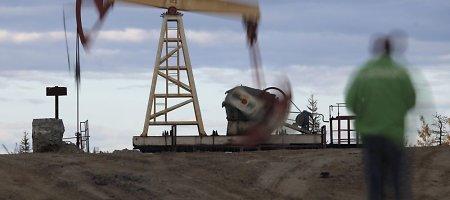 Naftos kainos baigiantis savaitei stabilizavosi
