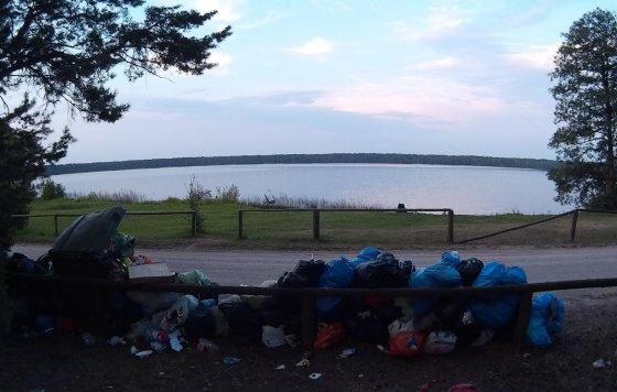 Skaitytojo nuotr./Lavyso ežero apylinkės