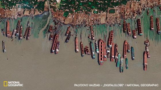 National Geographic nuotr./Palydovo nuotraukoje matoma 1,6 km ilgio Bangladešo pakrantės atkarpa į šiaurę nuo Čitagongo. Čia į krantą išplukdomi ir išardomi laivai iš viso pasaulio. Laivų ardykloms buvo iškirsta net 12 km mangrovių miškų. Paprastai ardykla užima ne daugiau nei ruoželį paplūdimio, kuriame telpa vienas didelis