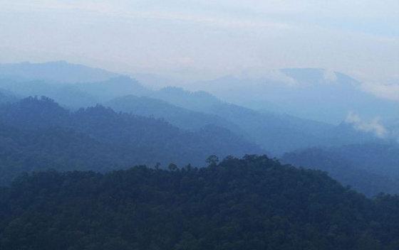 Hercogienės Catherine nuotr./Hercogienės Catherine nuotrauka iš Borneo