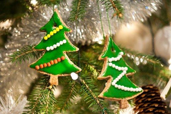 Shutterstock nuotr./Kalėdiniai sausainiai