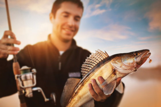 Shutterstock nuotr./Sužvejota žuvis