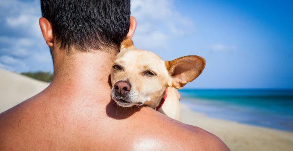 Atostogų karštinė: į keltus keliautojai veržiasi drauge su gyvūnais