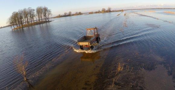 Pamaryje gamta ir vėl parodė nagučius: potvynis neslūgsta