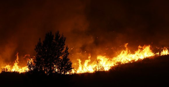 Per gaisrus Vašingtone žuvo trys ugniagesiai