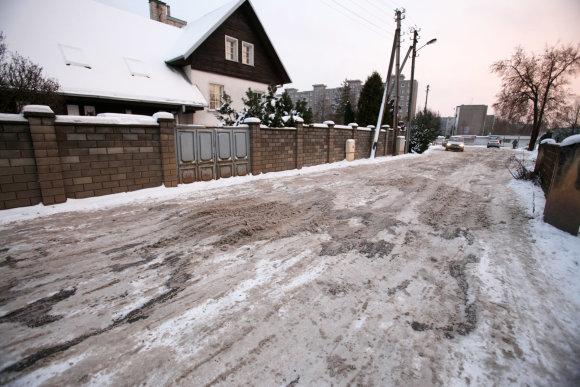 Eriko Ovčarenko/15min.lt nuotr./Kelias į Kleboniškio mišką
