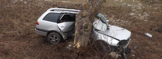 Biržų rajone nesuvaldytas automobilis šonu rėžėsi į medį, vairuotojas – reanimacijoje