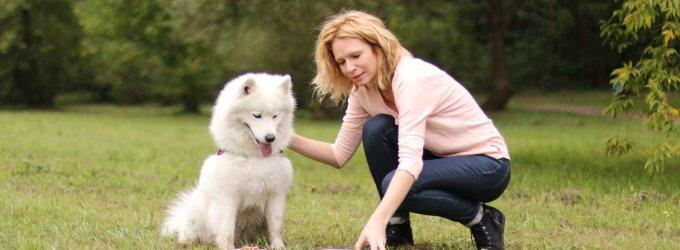 Eksperimentas: kokį ėdalą rinktųsi patys šunys? Žiūrėkite vaizdo įrašą